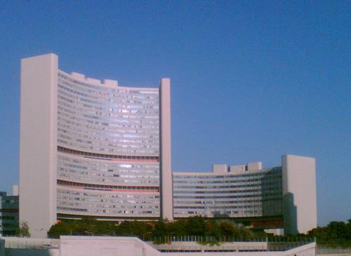 国際原子力機関(IAEA)